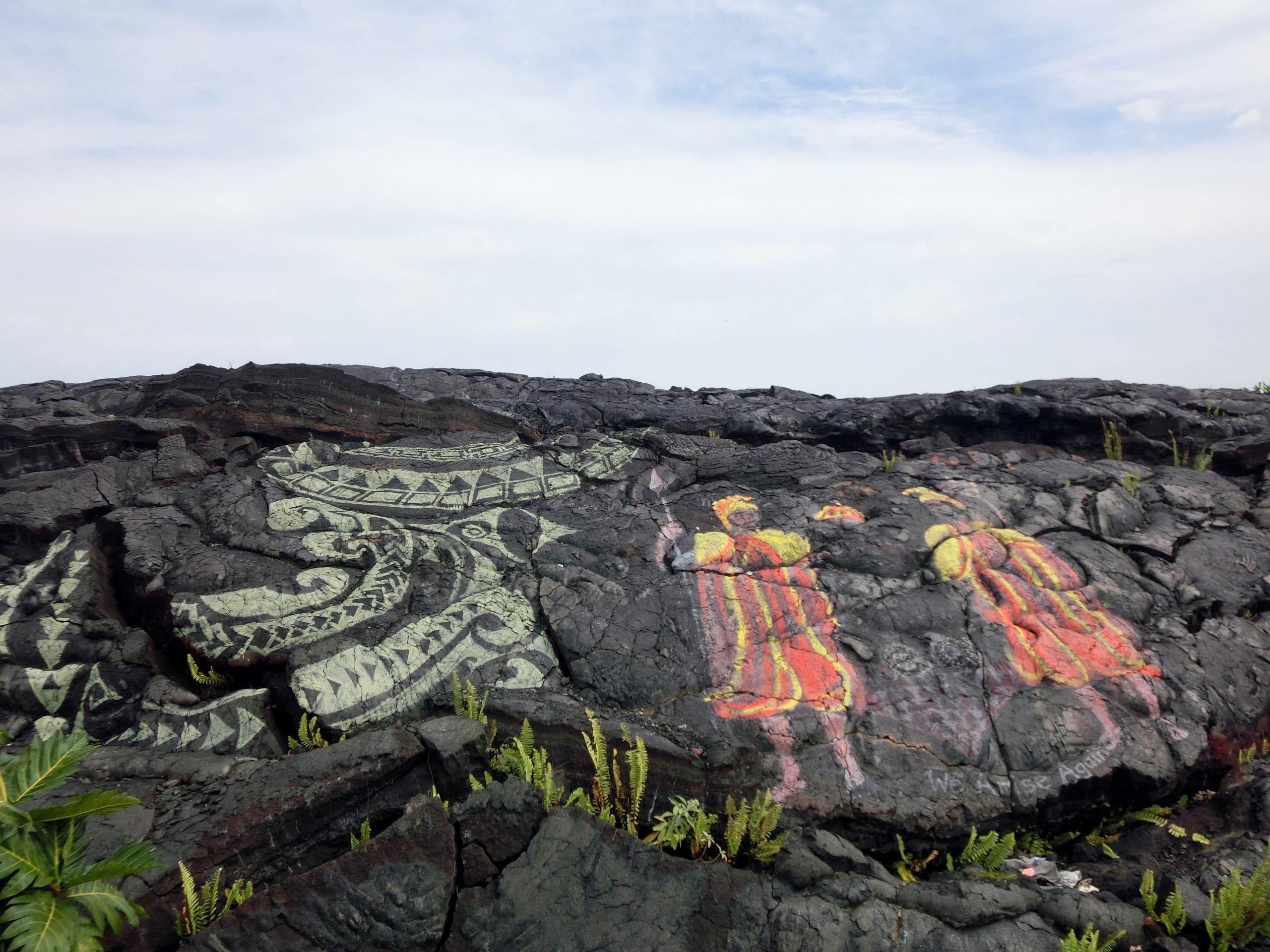 hawaiian monk seal art in hawaii