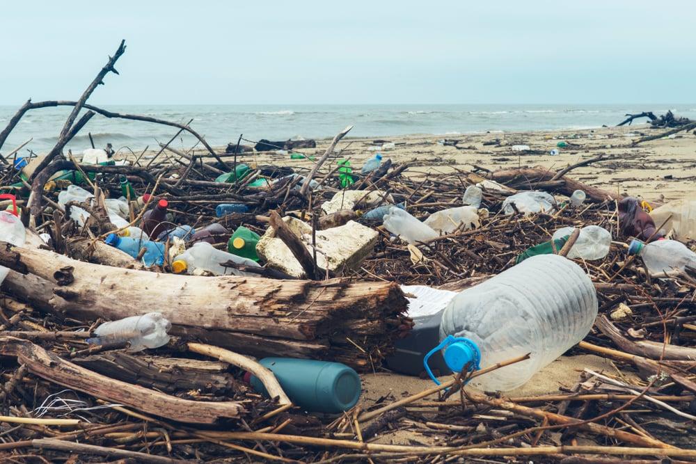 Plastic waste covers shoreline