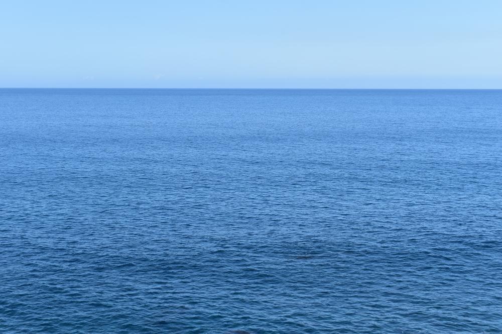how much salt is in the ocean?