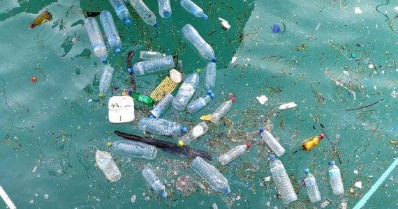 ocean pollution art